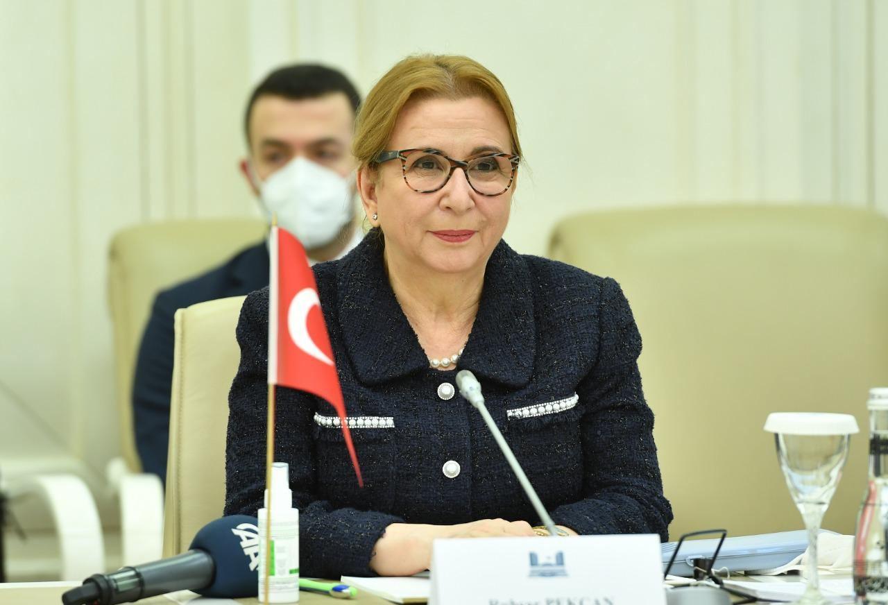 Sahibə Qafarova Türkiyə Respublikasının ticarət naziri ilə görüşüb (FOTO) - Gallery Image