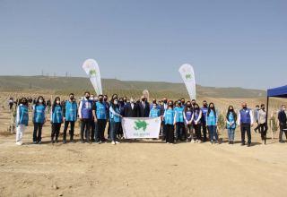 В Азербайджане успешно  продолжается  «Зеленый марафон» (ФОТО)