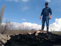 Zəngilanda ermənilər min illik ağacları yandırıblar (FOTO) - Gallery Thumbnail