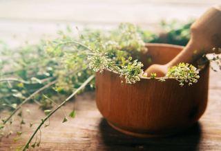 Iran's Isfahan producing 2,100 tons of medicinal herbs