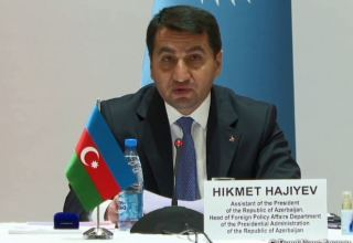 Anti-Turkic campaigns periodically carried out - Azerbaijani president's assistant