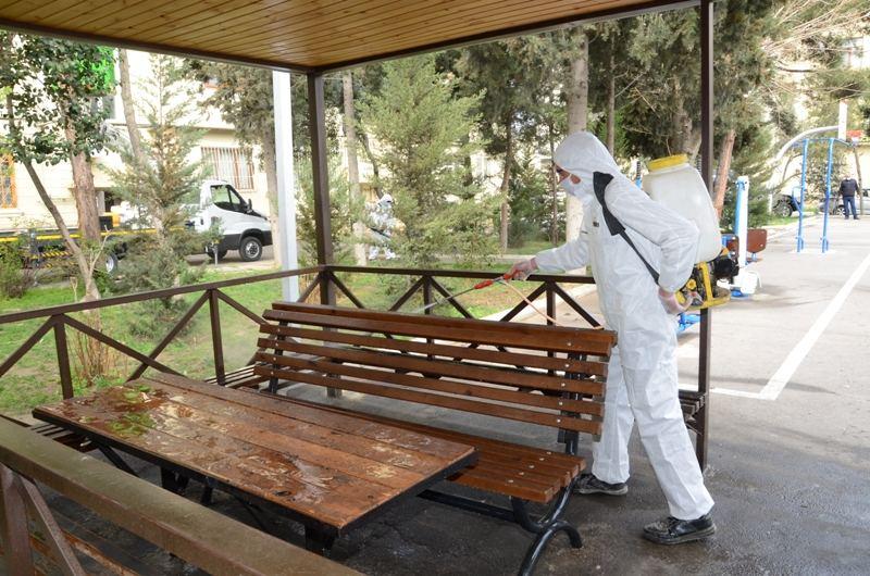 В Баку организованы масштабная дезинфекция и работы по благоустройству (ФОТО) - Gallery Image