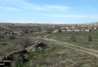 Footage from Azerbaijani Jabrayil's Sadi village (VIDEO)