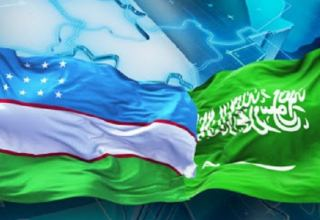 Uzbek deputy PM, Saudi Arabian minister discuss implementation of joint projects