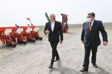 Президент Ильхам Алиев посмотрел процесс посева на хлопковом поле фермера Эльшана Халилова (ФОТО) - Gallery Thumbnail