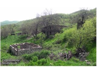 Azerbaijan's MoD shows footage from Zangilan's Najaflar village (VIDEO)