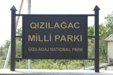 Vice-president of Azerbaijan's Heydar Aliyev Foundation visits Gizilaghaj National Park (PHOTO) - Gallery Thumbnail