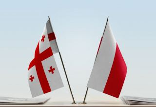 Georgia and Poland have potential for development of bilateral trade