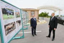 President Ilham Aliyev attends opening of Artificial Insemination Center in Nakhchivan (PHOTO) - Gallery Thumbnail