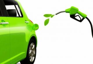 Global biofuel production to recover to 2019 level in 2021