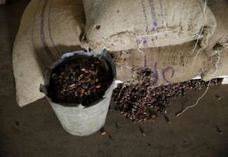 London May cocoa expiry sees 72,230 tonnes tendered