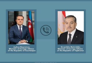 Azerbaijani and Tajik FMs discuss situation on Azerbaijani-Armenian border
