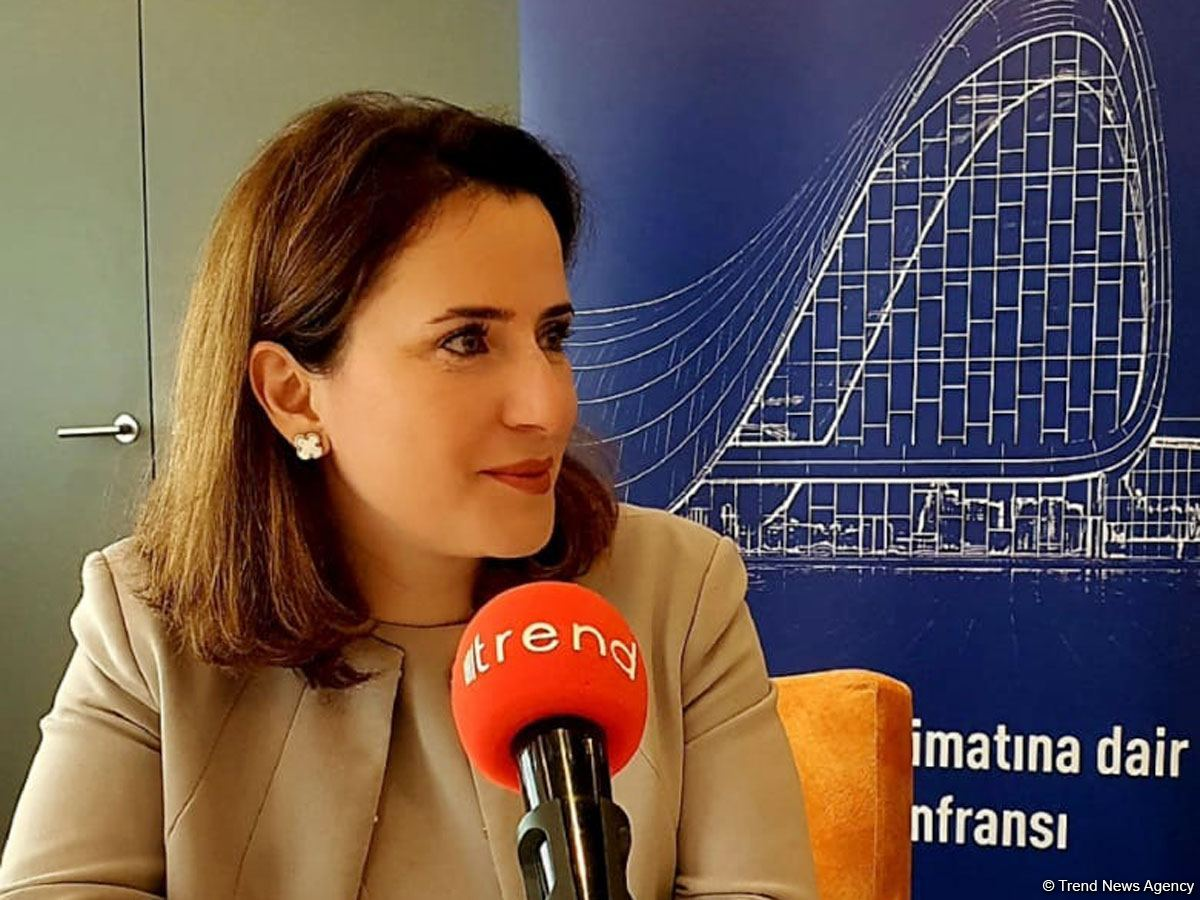 AmCham interested in participating in restoration of Azerbaijani liberated lands - VP (Exclusive)