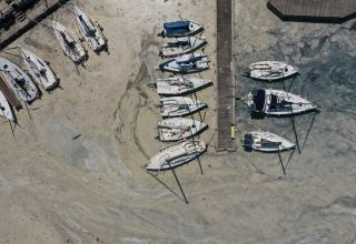 Uphill battle against 'sea snot' partially pays off in Turkey