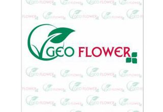 Georgian Geoflower company launches manufacturing of new product