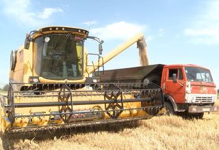 Wheat harvesting continues in villages of Azerbaijan's Tartar near liberated lands (PHOTO)