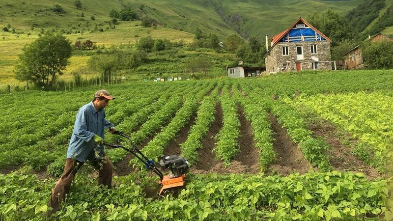 Georgia shares data on projects implemented in country's agricultural sector