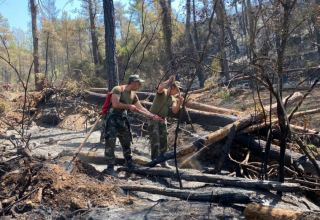 Azerbaijani firefighters prevent spread of fires in some directions in Turkey (PHOTO/VIDEO)