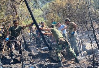 New details of extinguishing forest fires in Turkey by Azerbaijani firefighters disclosed (PHOTO/VIDEO)