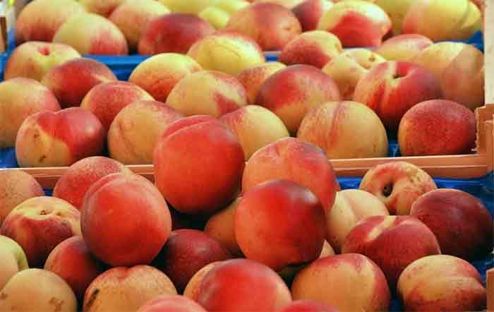 Georgia hopes to export record amount of peaches and apples