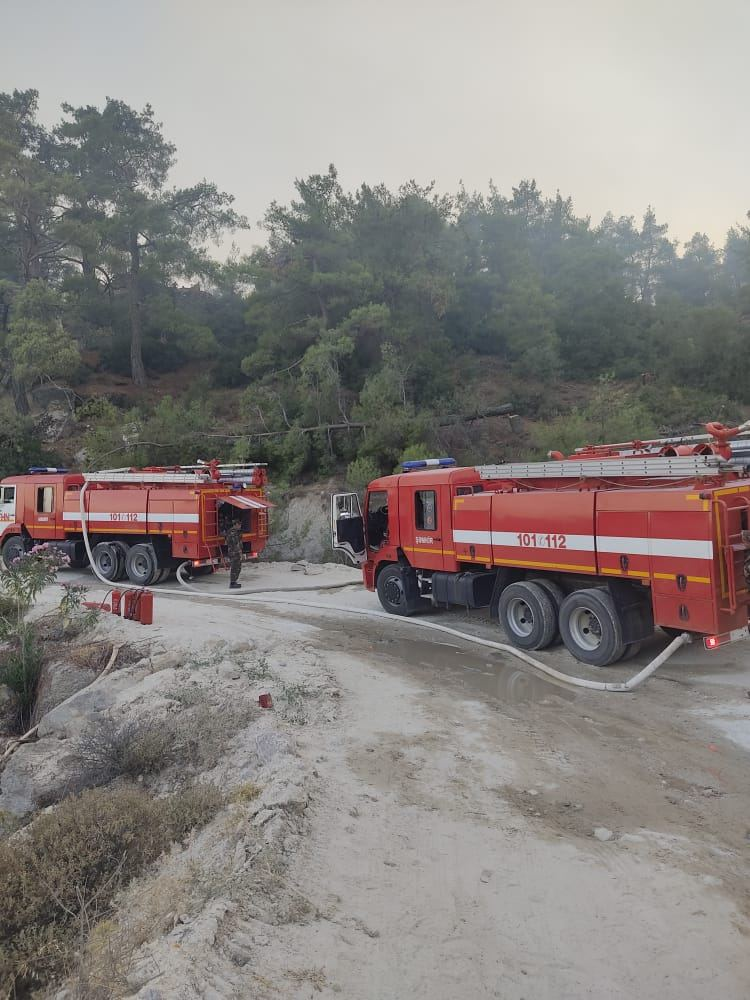 Azerbaijani firefighters continue to fight forest fires in Turkey (PHOTO/VIDEO) - Gallery Image