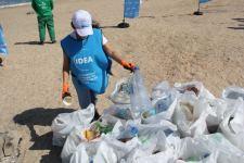 В Баку прошла очередная акция по очистке побережья - Gallery Thumbnail