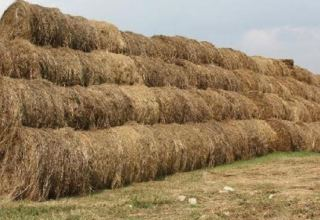 Iran imports hay from Russia due to recent drought