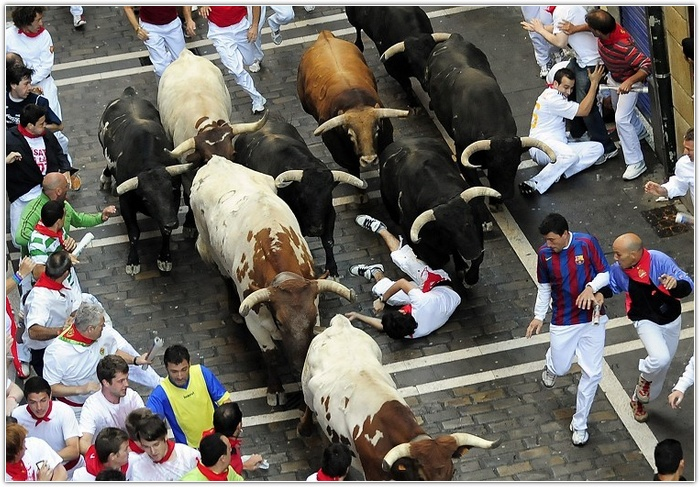 Photo: Spain's San Isidro bullfighting festival suspended after three matadors injured / Arab World