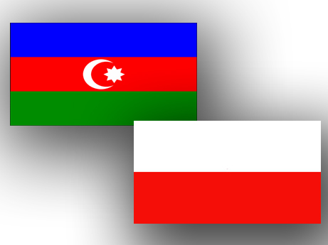 Photo: Azerbaijan, Poland discuss development of cooperation in various spheres  / Politics