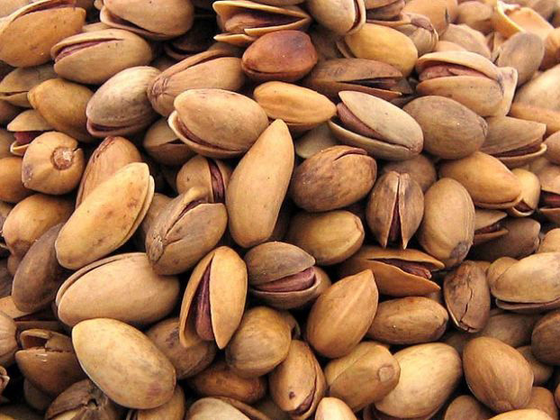 Photo: Chairman of Iran's Chamber of Exports: banning pistachio exports a big mistake / Iran