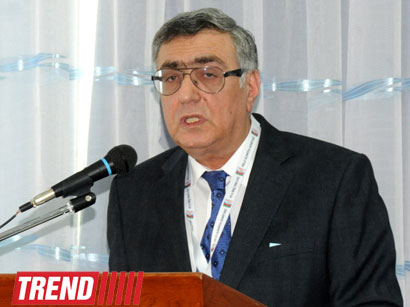 Photo: NOC vice president: Azerbaijan expects best results from figure skating at Sochi Olympics