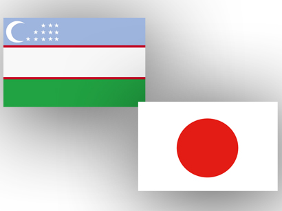 Photo: Uzbekistan, Japan to hold next round of political consultations  / Politics
