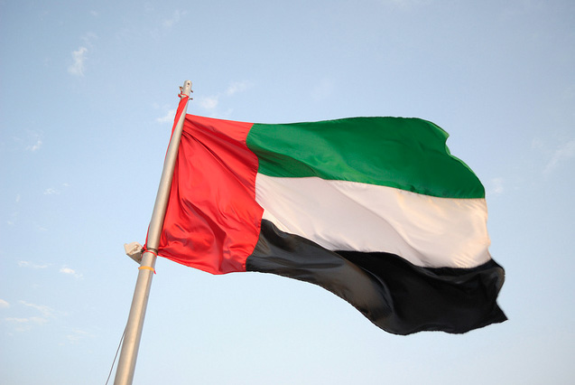 Photo: UAE sentences 7 over alleged al-Qaeda ties / Arab World