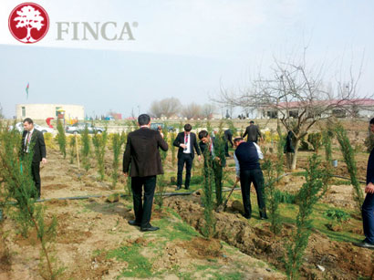 Photo: Salyan branch of FINCA Azerbaijan Held a Landscaping Event / Economy news