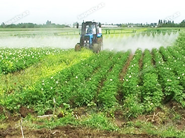 Photo: Astana's Prosecutor's Office returns agricultural land plots to state ownership / Economy news
