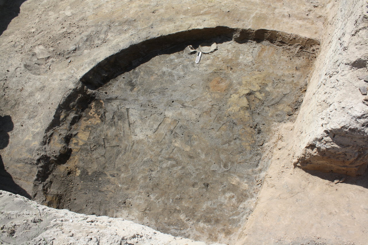 Photo: Ancient settlement of South Caucasus discovered in west of Azerbaijan  / Society