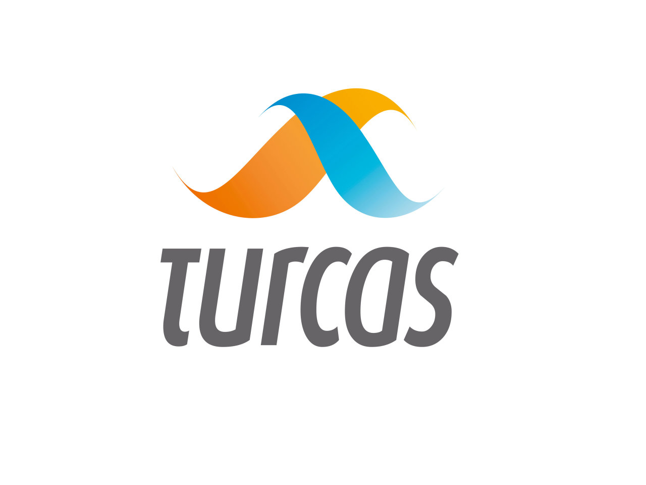 Photo: Turcas Petrol Chairman: Turkey needs to diversify its gas import sources  / Turkey