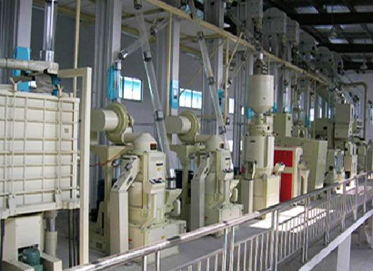 В Туркменистане заработал новый рисовый завод