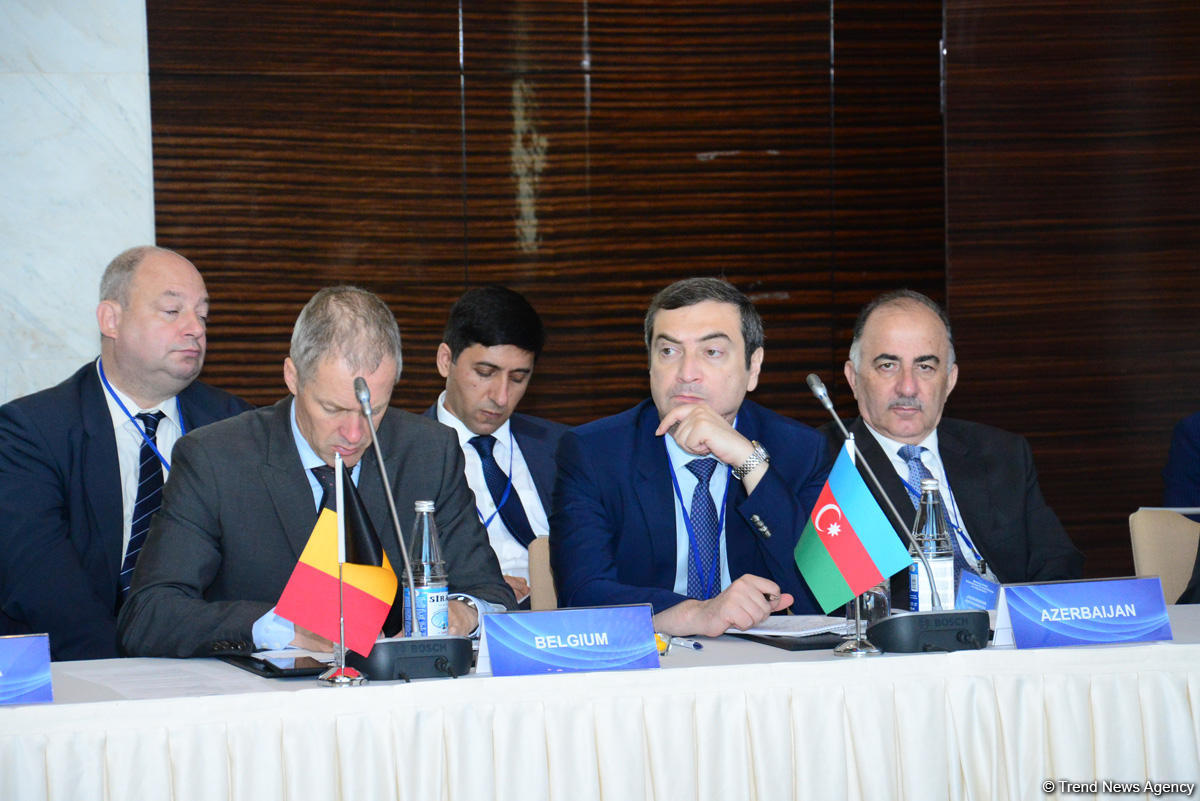 Azerbaijan: ICG interested in co-op to resolve conflict in Afghanistan (PHOTO)