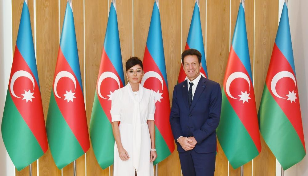 Первый вице-президент Мехрибан Алиева встретилась с президентом Бизнес-совета MEDEF (ФОТО)