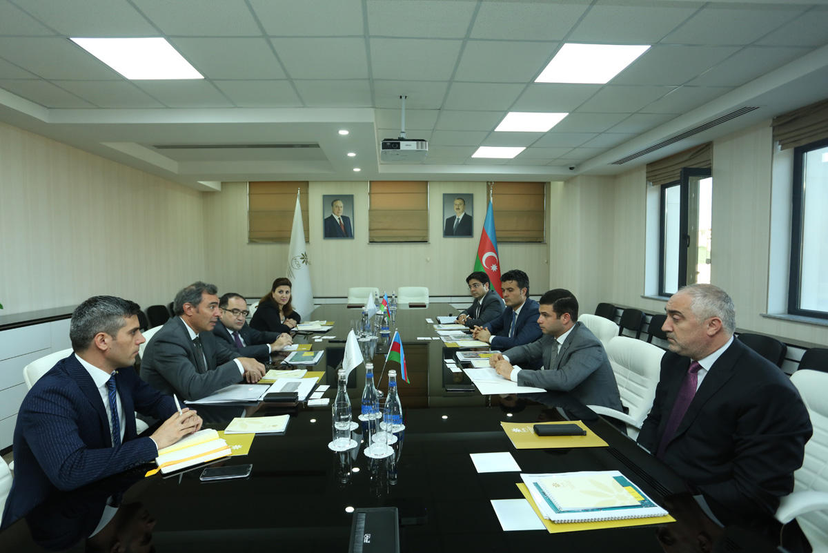Azerbaijan's Agency for Development of SMEs to co-op with Ernst & Young Holdings (PHOTO)