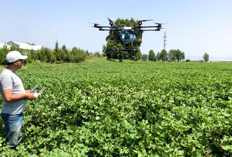 Drone used for spraying pesticides on cotton field in Azerbaijan for first time (PHOTO)