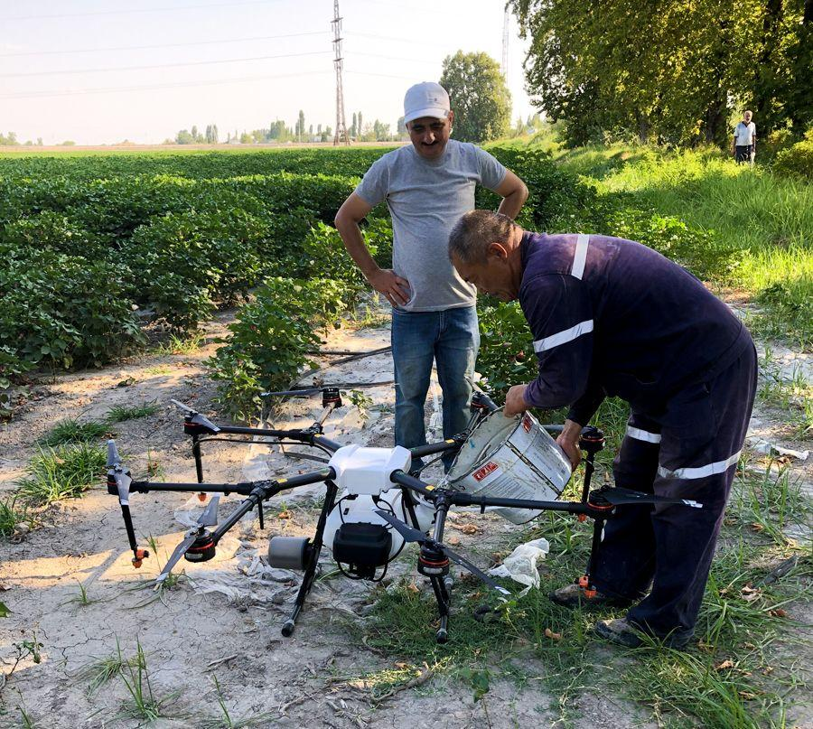 Drone used for spraying pesticides on cotton field in Azerbaijan for