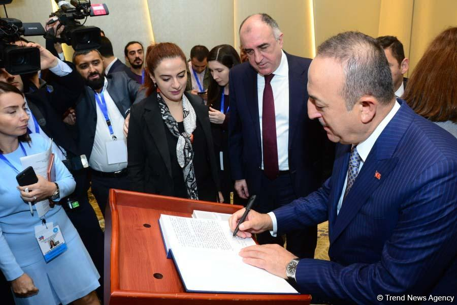 Meeting of FMs of Turkic Council states underway in Baku (PHOTO)
