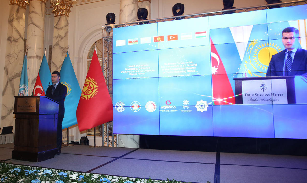 Azerbaijan's SME Development Agency interested to co-op with Turkic Council members (PHOTO)