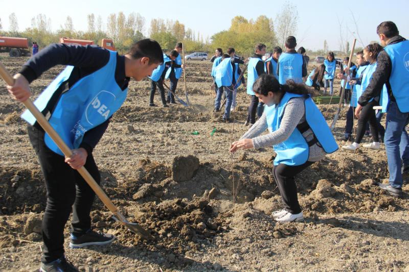 В Евлахе заложены фруктовые сады для малообеспеченных семей (ФОТО)
